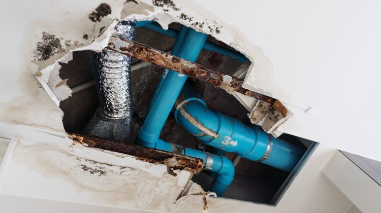 The seemingly benign water that flows through your home's plumbing hides a secret. Water can harbor minerals that can cause damage to your pipes and shorten the life of your water heater and other fixtures. If you have hard water, you need to take control of it before it controls all your home plumbing decisions. […]
